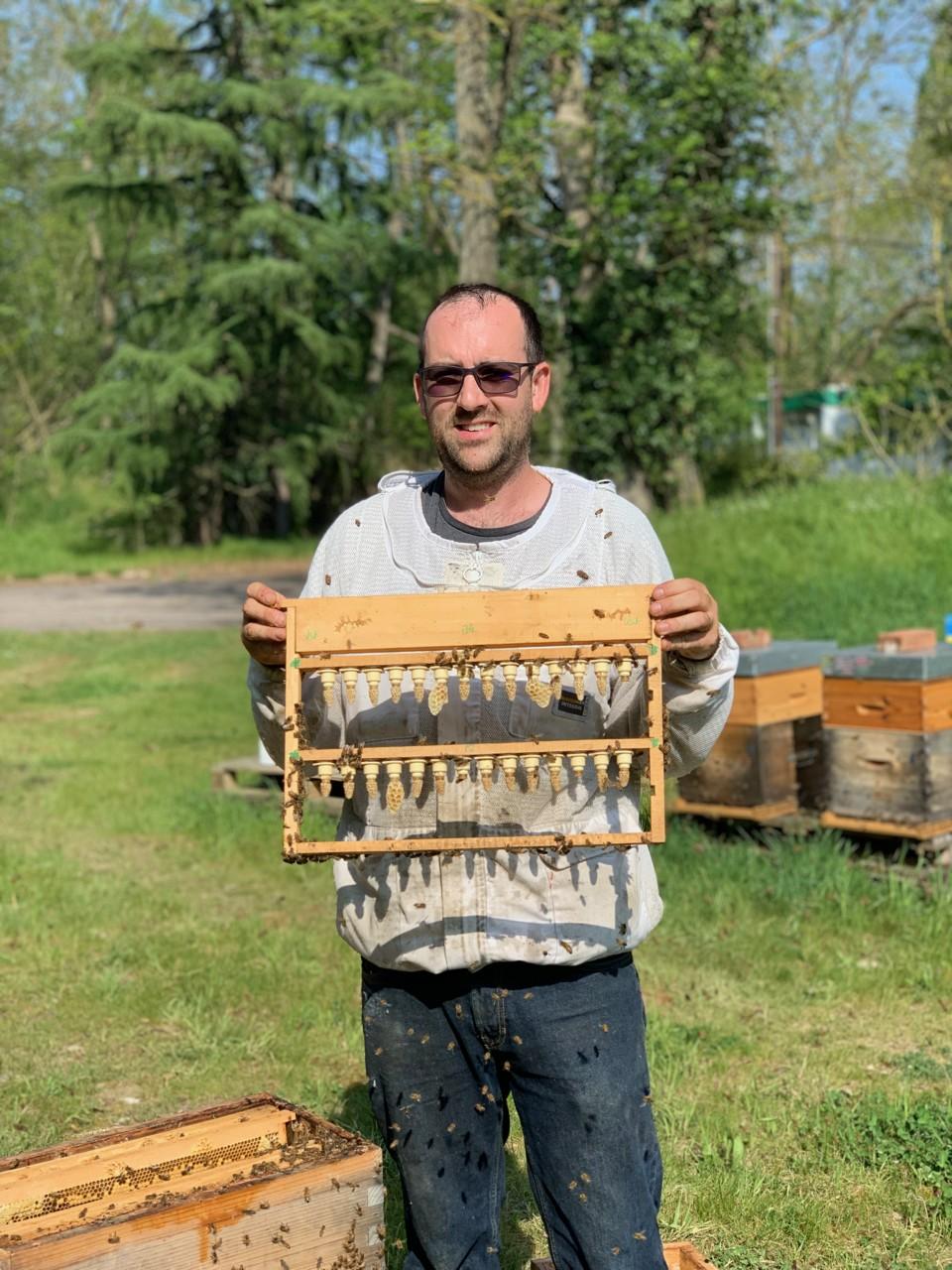 Les Ruchers d'Alexandre , location et parrainage de ruches d'abeilles pour les entreprises